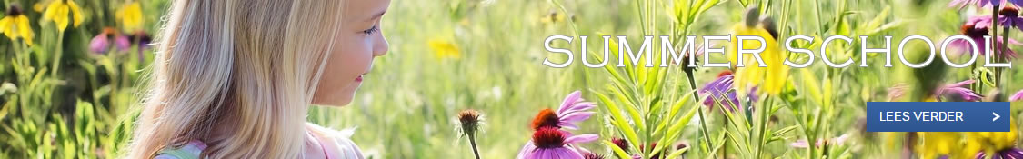 Banner Kernvisie methode Summer School
